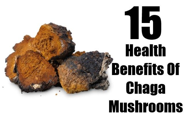 15 Proven Health Benefits of Chaga Mushroom